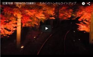 紅葉トンネルライトアップ