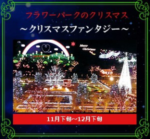 フラワーパークのクリスマス
